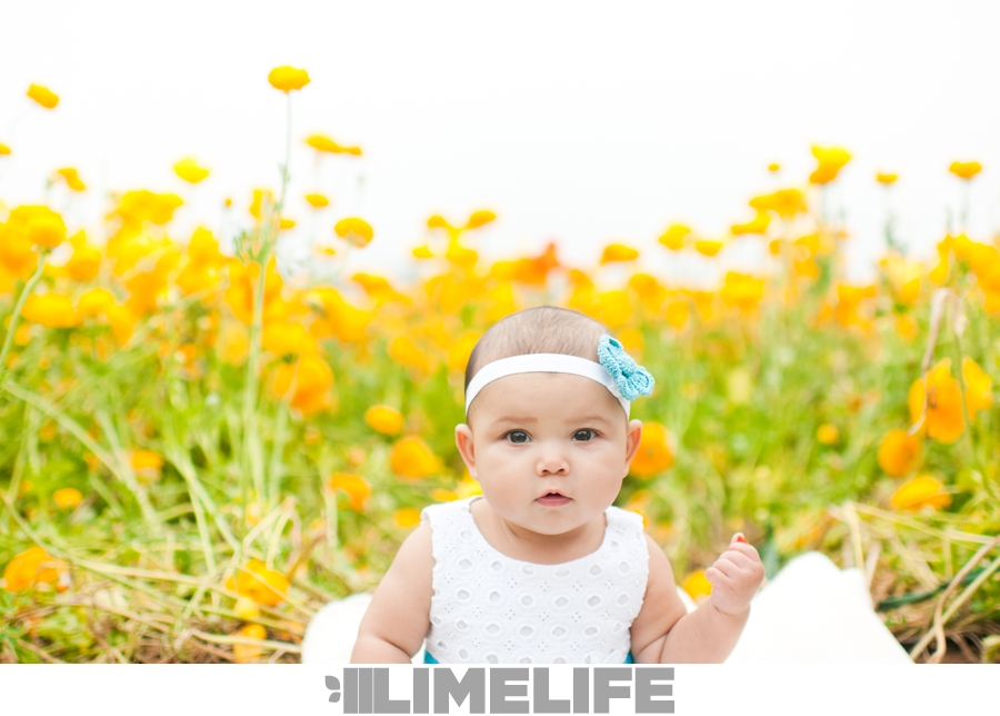 Lime Life* Limelife - Cause You're Right On Time / I Wanna Go Bang