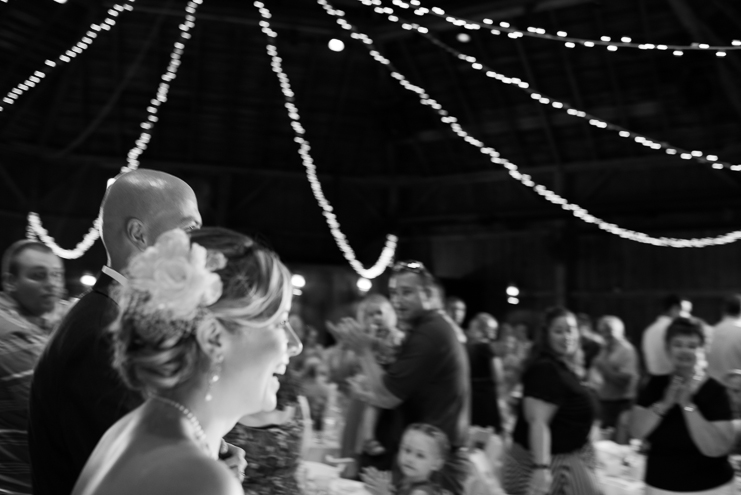 limelife photography destination wedding photographers milwaukee wedding photographers old world wisconsin wedding photos old world wisconsin weddings husband and wife wedding photographers rustic wedding photos purple wedding photos barn weddings_047