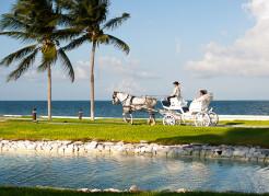 Cancun-Wedding-Photographers