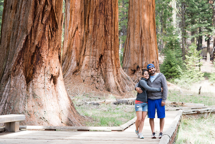 sequoia national park photographers limelife photography california photographers adventure photographers_014