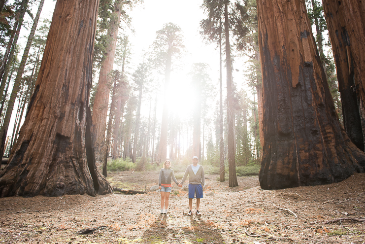 sequoia national park photographers limelife photography california photographers adventure photographers_028