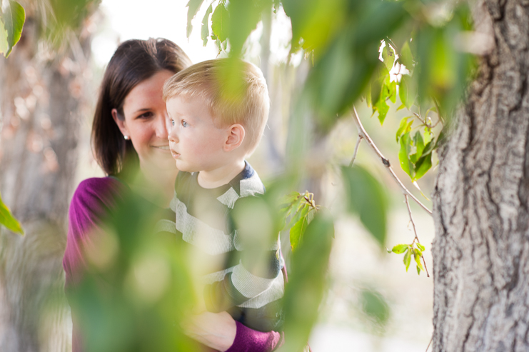 10 limelife photography colorful family photos in colorado