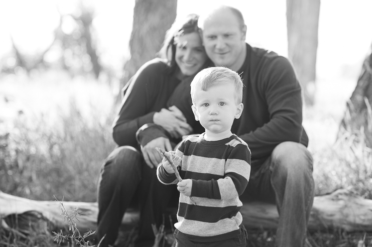 3 limelife photography colorado family portraits