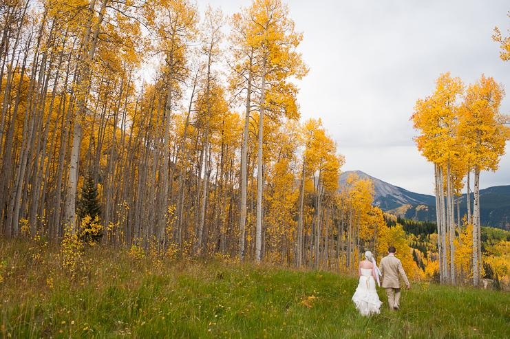 75 scenic fall wedding photos limelife photography 075