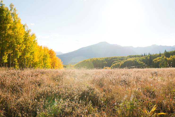 Limelife Photography_crested butte mountain wedding fall photos-1