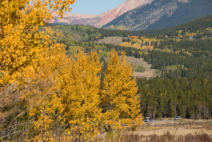 Limelife Photography_road to crested butte wedding-1